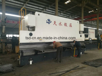 Large CNC Press Brake for Metal Plate (WE67K-300/6000)