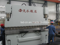 Small CNC Press Brake for Metal Plate (WE67K-250/3200)