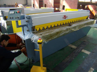 Guillotine Shearing Machine to Shear 3.2mm Mild Steel (QH11D-3.2X2500)