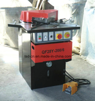 Fixed Angle Notching Machine (QF28Y-6X200)
