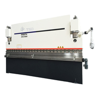 3+1 Axis Small CNC Press Brake for Sheet (WE67K-250/5000)